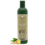 Dầu gội mọc tóc hỗ trợ trị rụng tóc dành cho tóc rụng, tóc khô xơ và hư tổn Weilaiya chiết xuất từ tinh chất gừng tươi Hà Thủ Ô 100% thiên nhiên không chất sunfat tạo bọt (400ml) - Hàng chính hãng thumbnail