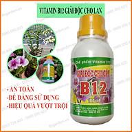 Vitamin B12 Cho Lan 100ml - Giải Độc Cho Cây Khi Bị Sốc Thuốc, Sốc Nhiệt - B12 Giúp Tái Tạo Tế Bào Mới, Phục Hồi Nhanh thumbnail