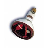 Bóng đèn sưởi hồng ngoại dành cho cho chó mèo đẻ thumbnail