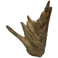 Gỗ lũa ngọc am tự nhiên phong thủy Ma 05 (30cm x 22cm) thumbnail