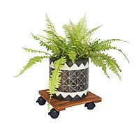 Đế lót chậu cây có bánh xe Vuông R30 (chịu lực 80kg) - Chất liệu gỗ tràm bông vàng thumbnail