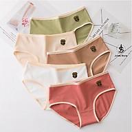 Bộ 5 Quần Lót Nữ Cotton thông hơi họa tiết ép lạnh Thời Trang Cho Nữ Julido Store, mẫu được các chị em yêu thích A3 thumbnail
