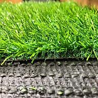 Thảm cỏ nhân tạo 2cm loại tốt thumbnail