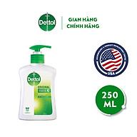 Nước rửa tay diệt khuẩn Dettol - Chai 250ml thumbnail