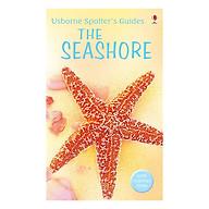 Usborne The Seashore thumbnail