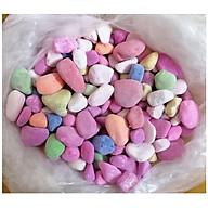 Túi 1Kg So i To Nhiều Màu, đường kính 2cm, Xê p Gô c Cây, Trang Trí Bể Cá thumbnail