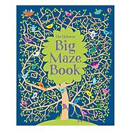 Usborne Big Maze Book thumbnail