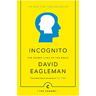Incognito The Secret Lives Of The Brain thumbnail