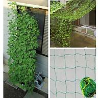 Lưới giàn leo , lưới giàn cây, lưới trồng cây leo, lưới trồng bầu bí nhiều kích thước thumbnail
