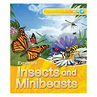 Explorers Insects And Minibeasts thumbnail