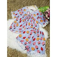 Sét bộ Mẹ và Bé in hoạ tiết trái dâu viền ren (bé dưới 12kg) - SMB 001 thumbnail
