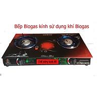 Bếp Biogas kính cường lực chịu nhiệt sử dụng khi sinh học Bioga Nam Bộ Xanh thumbnail