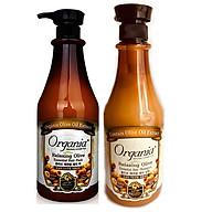 Combo dầu gội siêu mượt olive 750g và dầu ủ tóc olive 1000g organia thumbnail