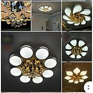 Đèn mâm ốp trần hiện đại có điều khiển từ xa thumbnail