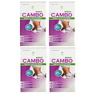 Combo 4 hộp Thực phẩm bảo vệ sức khỏe dùng 2 tháng hỗ trợ giảm cân an toàn với Rocori thumbnail
