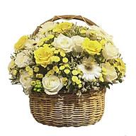 Giỏ hoa tươi - Ngày Mật 3288 thumbnail
