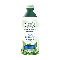 Dầu Gội Làm Sạch Gàu Từ Tinh Dầu Tràm Trà L angelica Shampoo Tea Tree Oil Anti-dandruff 250ml thumbnail