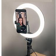 Đèn spa live stream 26cm chân 2.1m hạ được xuống 60cm, dùng cho livestream makeup (tặng kèm đầu đọc thẻ nhớ cao cấp) thumbnail