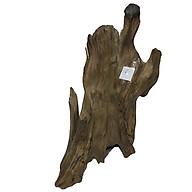 Gỗ lũa ngọc am tự nhiên phong thủy (Mã 06 Cao 33cmx20cmx1,4kg) thumbnail