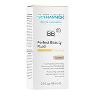Kem che khuyết điểm màu da cho da thường và khô_BB Perfect beauty fluid thumbnail