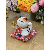 Mèo sứ may mắn - Maneki Neco - 6 thumbnail
