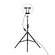 12-in LED Ring Light Dimmable Selfie Circle Lamp Fill-in Light 3 Lighting Modes 10 Brightness Levels with 1 BT Remote thumbnail