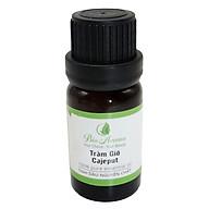 Tinh dầu tràm gió - Cajeput 10ml Bio Aroma thumbnail