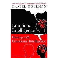 Emotional Intelligence & Working with Emotional Intelligence thumbnail