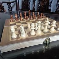 Bộ cờ vua gỗ đẹp thumbnail