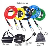 Bộ dây kháng lực, đàn hồi tập gym (gồm 11 món và hướng dẫn) thumbnail