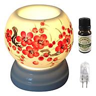 Combo tinh dầu sả chanh Eco oil 10ml cùng đèn xông tinh dầu MNB08 và 1 bóng đèn thumbnail