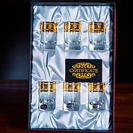 Bộ 6 Ly Shot Uống Rượu Mạnh 45ml Họa Tiết Cổ Điển thumbnail