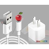 Bộ Củ Cáp Sạc Cổng USB Dành Cho Iphone 7 8 Plus X Xs Max Xr thumbnail