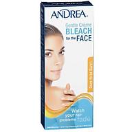 Andrea Gentle Cream Bleach for the Face 42g + 28g thumbnail
