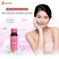 01 Chai nước Đông Trùng Hạ Thảo Hector Collagen thumbnail