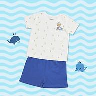 Bộ Baby Shark trắng CHAANG VIETNAM thumbnail