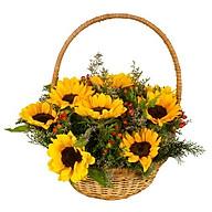 Giỏ hoa tươi - YOU ARE MY CRUSH 3958 thumbnail