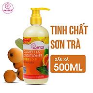 Kem hấp dầu Avatar tinh chất Sơn Trà Camellia 500ml-Kích thích mọc tóc nuôi dưỡng mái tóc bồng bềnh thumbnail