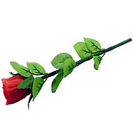 Đồ chơi ảo thuật Hoa hồng tự nở thumbnail