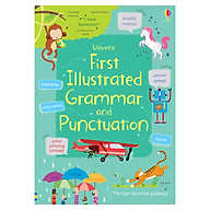 Usborne First Illustrated Grammar and Punctuation thumbnail