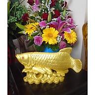 Cá Rồng ngậm tiền - Kim Long Đắc Lộc - đá poly vàng - CKLV27 thumbnail