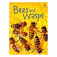 Usborne Bees and Wasps thumbnail
