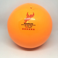 Quả bóng chuyền hơi Bach Hien 250gng thumbnail