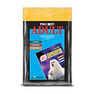 Thức Ăn Hạt Cho Chó Trưởng Thành Probest Adult 500gr thumbnail
