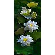 Tranh dán tường 3d hoa sen trắng - ép kim sa - có sẵn keo H121 thumbnail