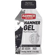 Gel uống bổ sung năng lượng - Hammer Nutrition Hammer Gel vị Cafe HM 301 thumbnail