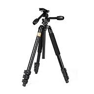Chân máy ảnh quay phim 2 tay cầm QZSD Q620 chịu lực 15kg cao đến 183cm - Hàng chính hãng thumbnail