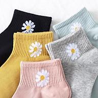 Combo 10 đôi tất Hoa Cúc cho ngày rực rỡ, chất đẹp, mềm mịn. thumbnail