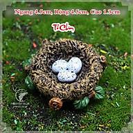 Tượng Chim Sẻ mini Trang Trí Tiểu Cảnh Terrarium, DIY , Cây Bonsai. thumbnail