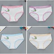 com bo 4 quần lót bé gái dậy thì 10-14 tuổi 32-40kg chất thun spandex giao màu ngẫu nhiên thumbnail